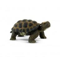 Bullyland teknős játékfigura 63553