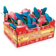 Legler Fa színes halak dobozban   9854